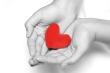 We handle your heart gently